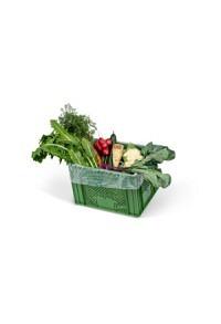 Gemüse-Box mittel