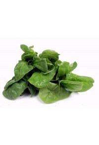 Spinat ganze Pflanze 100g