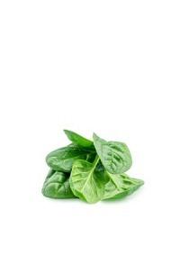 Spinat handgepflückt 100g